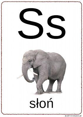 alfabet obrazkowy do wydrukowania - litera s - słoń