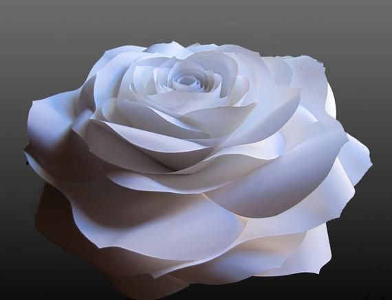 Giant Paper Flower for ordering by the piece, Paper Roses, Nursery Wall Decor, Wedding Backdrop #crepepaperroses