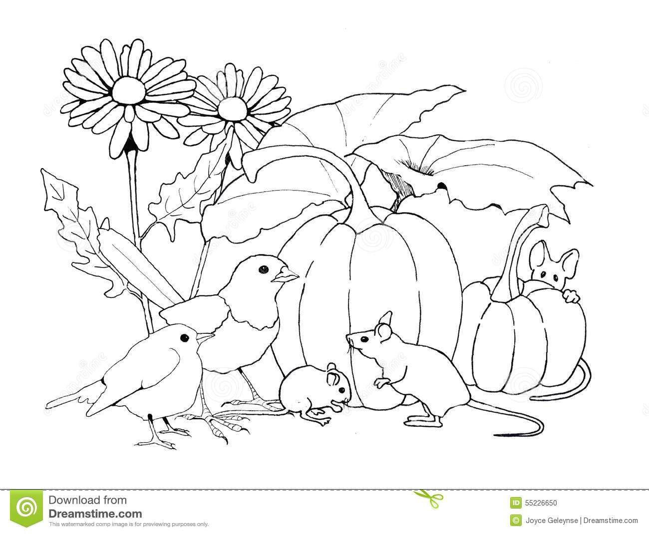 birds and mice with pumpkins and flowers coloring page download