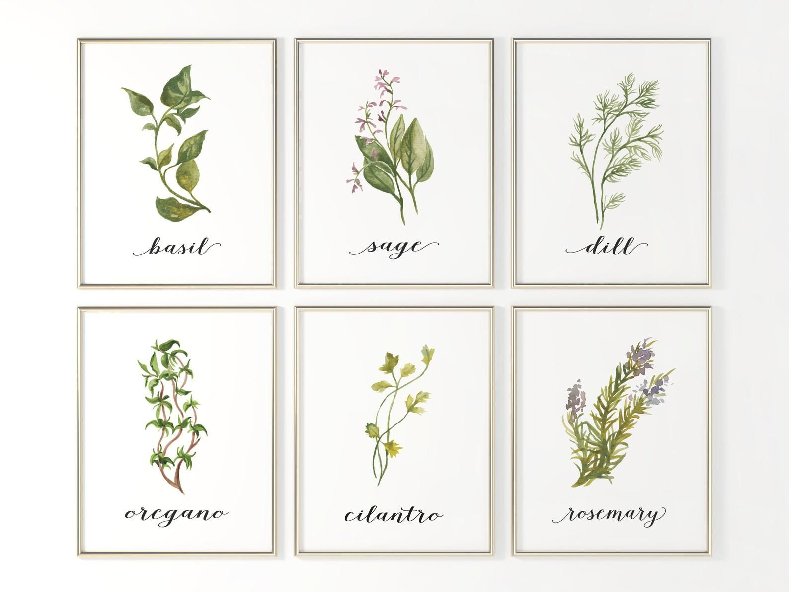Kitchen Herb Wall Art Printable Set Of 9 Herb Prints Kitchen