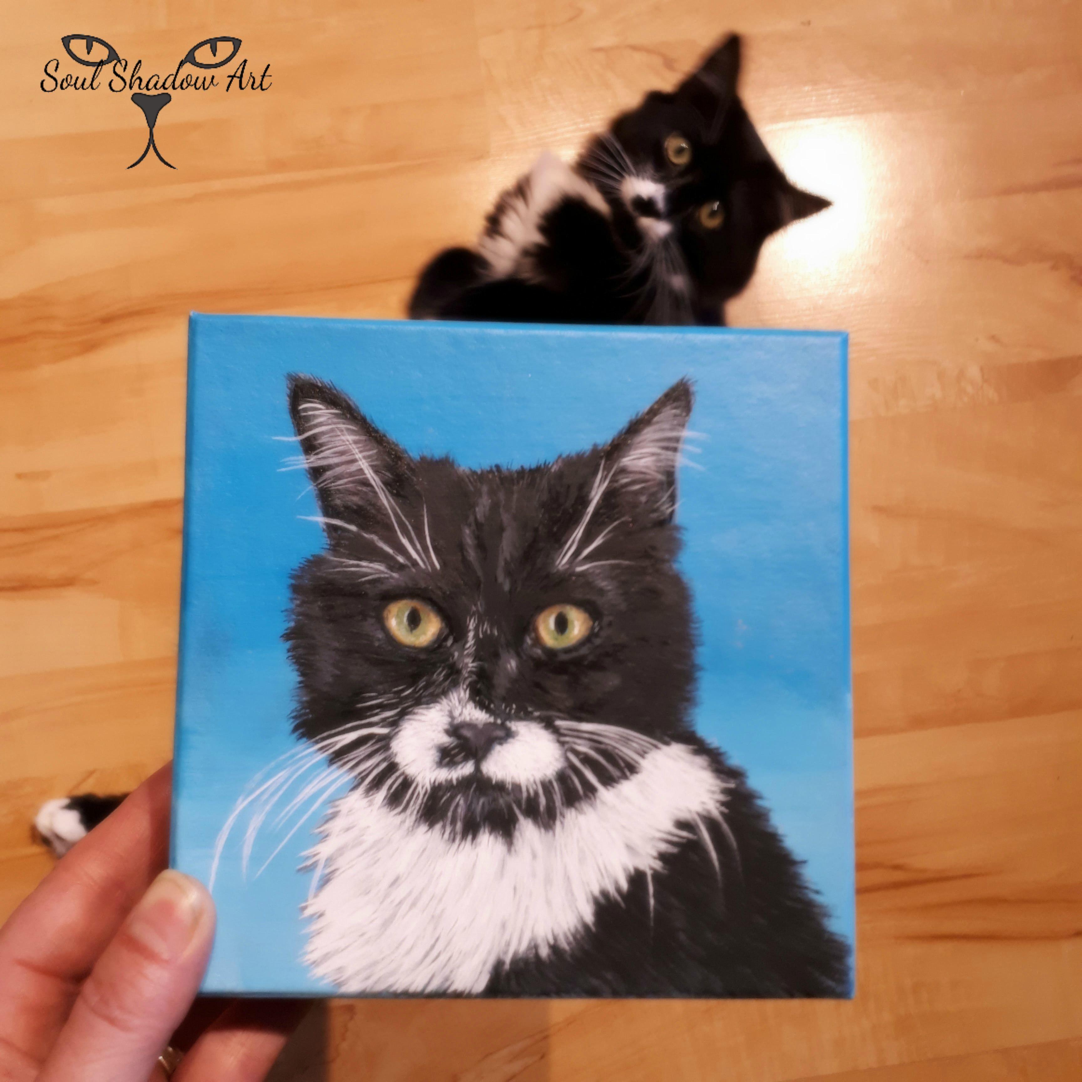 Custom Pet Portraits Tuxedo Cat Custom Pet Portraits Pet