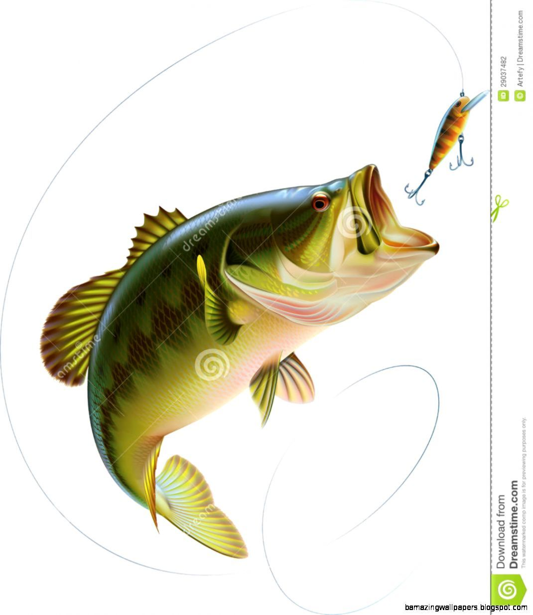 bass fishing drawings wwwimgkidcom the image kid has it