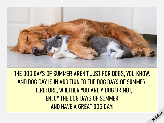 DOG DAY ECARD (8/26) | eCards Designed by BebeStarr in 2020 | Cute cats and  dogs, Hug your cat day, Cute animal memes
