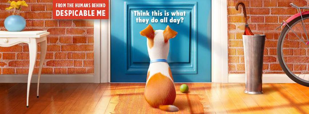 The Secret Life Of Pets Is Sweet Yet Read Our Crisp Review