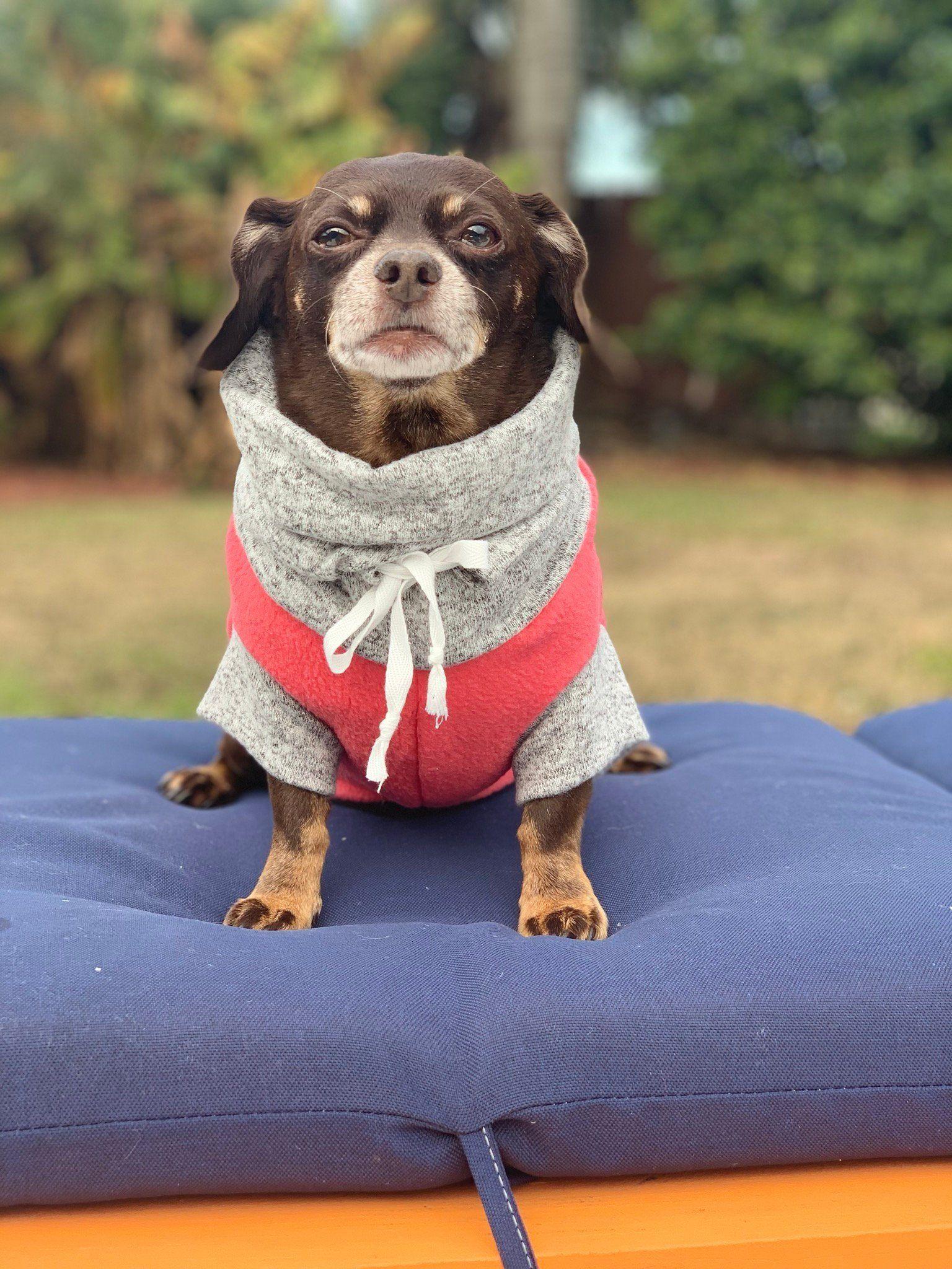 Dog Christmas hat Dog winter hat| Dog hat Hat for pet