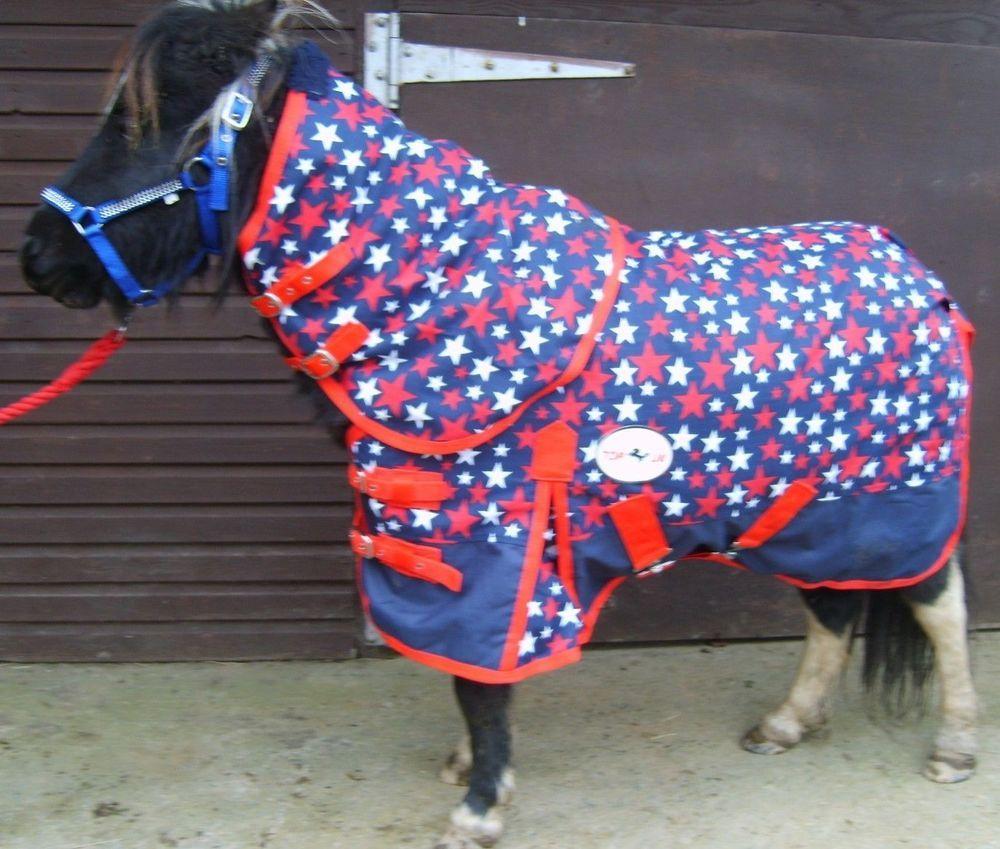 Mini Shetland Pony 1200d No Fill Blue