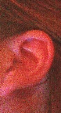 Rh Negative Blood Type Secrets: Elven Ears   this is me! Wow I can't