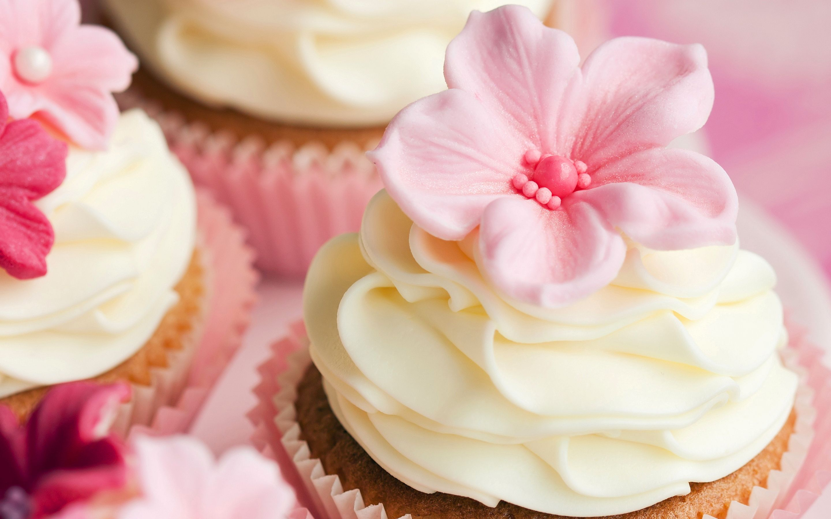 cupcakes wallpaper cupcakes live images hd wallpapers | hd