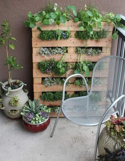 THIS is what I want. This is precisely it. A compact vertical garden made