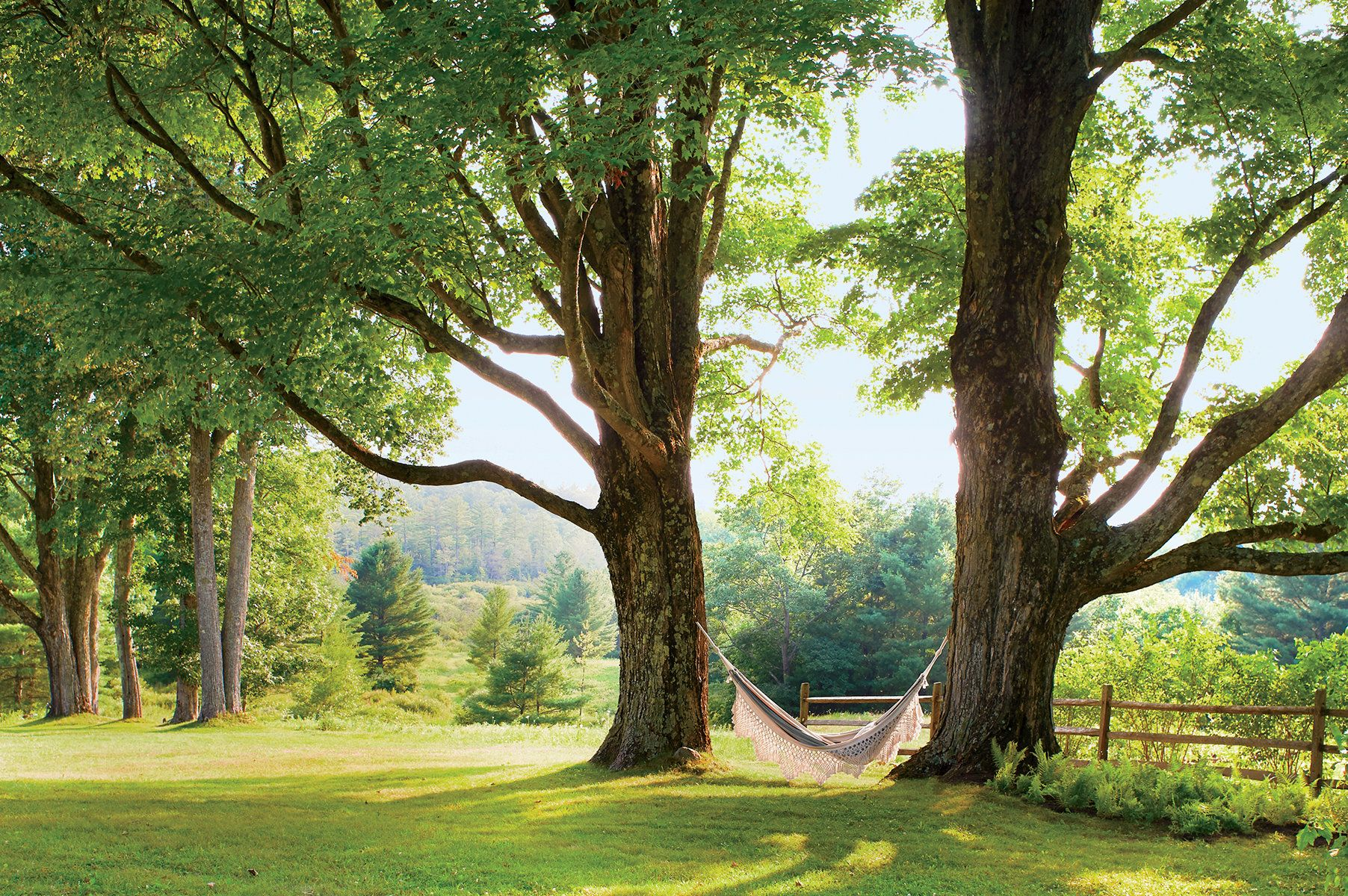Inside Adam Lippes's Berkshires, MA Home Vogue (con