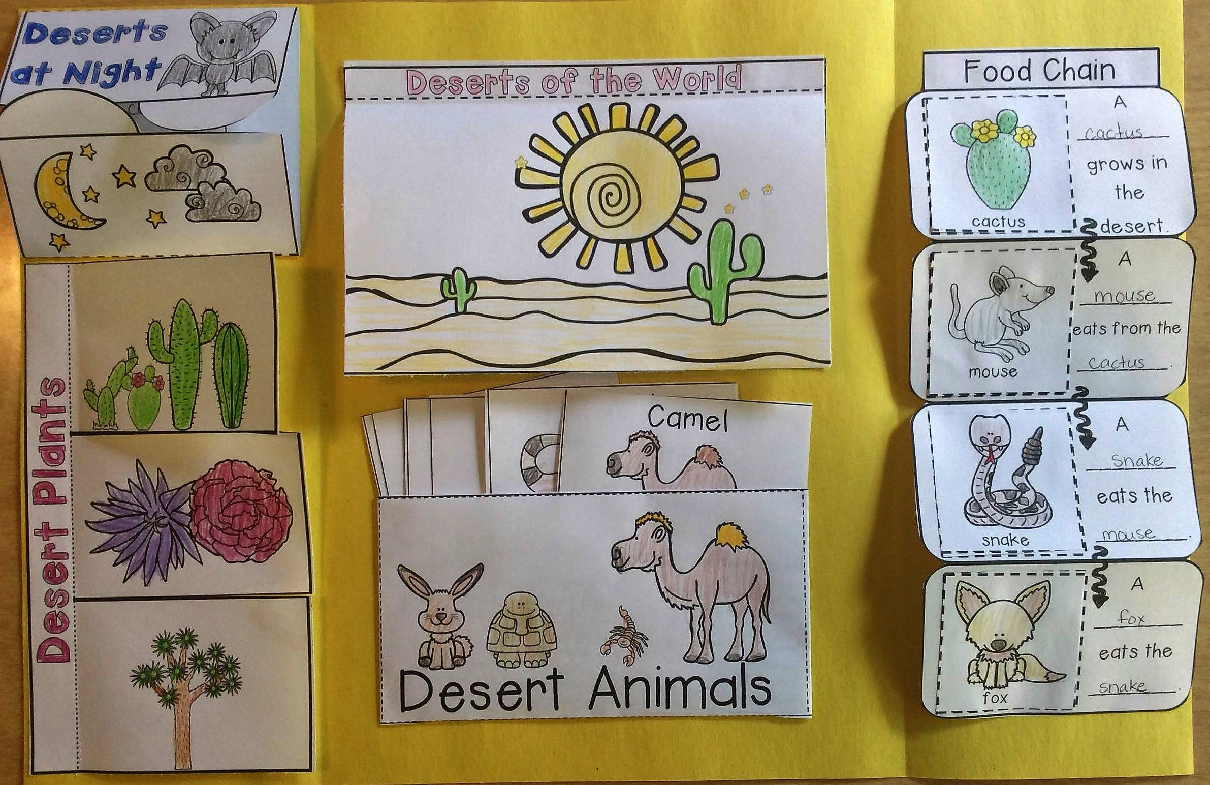 Desert Interactive Lapbook Make Learning About The Desert Fun And Hands On With This Lapbook Project Interactive Lapbooks Desert Facts Deserts [ 1545 x 2382 Pixel ]