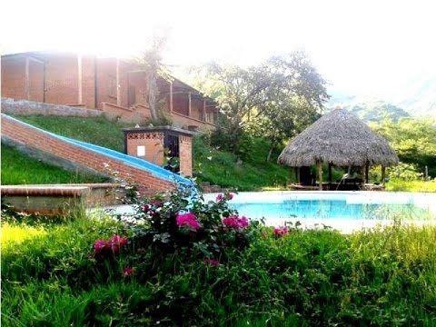 Vendo Permuto Finca Ganadera Yotoco Valle Colombia Fincas Ganaderas Fincas Apartamentos En Cali