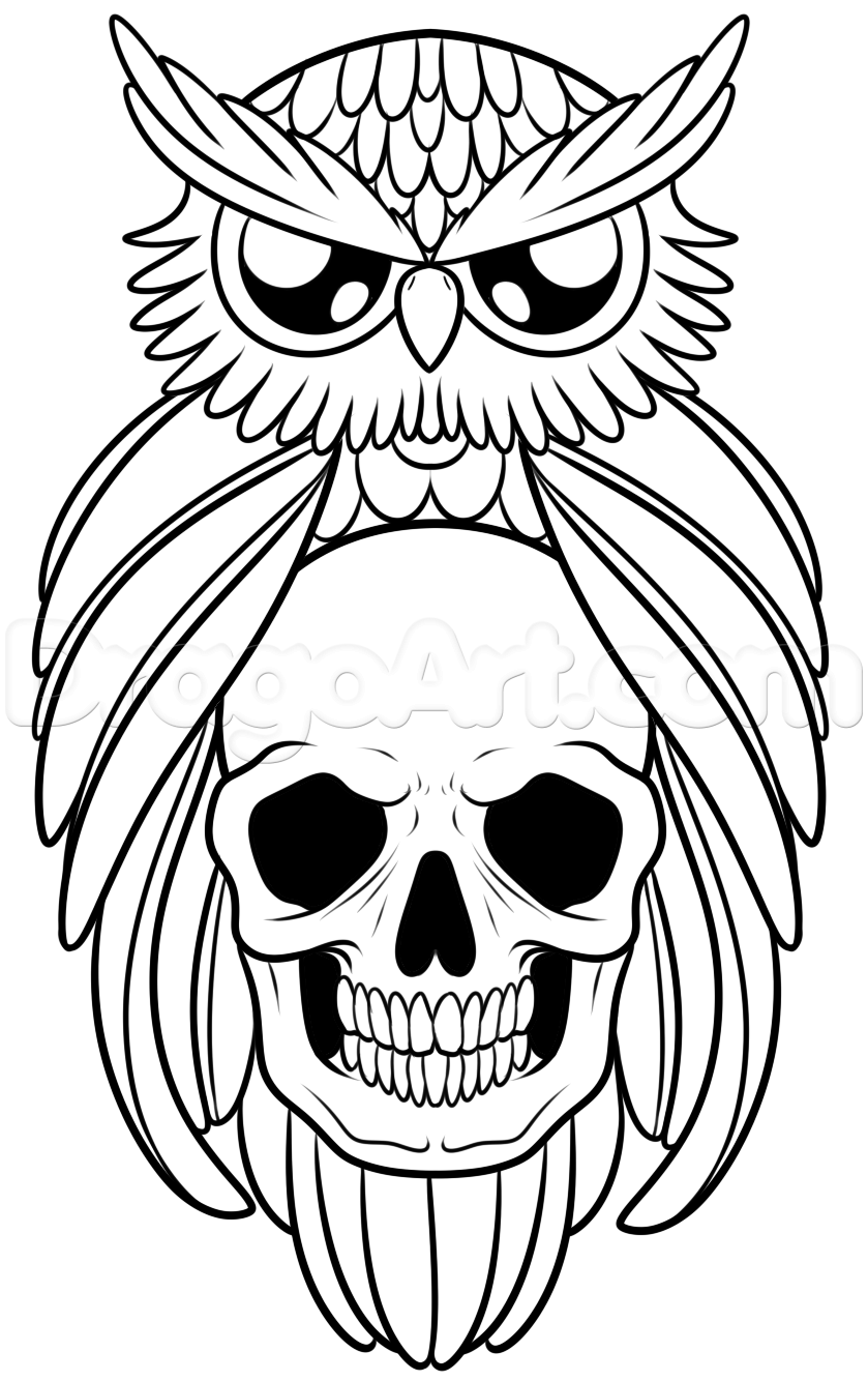 how to draw an owl and skull tattoo step 8 Owls drawing