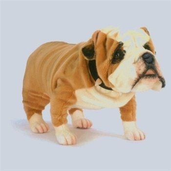 handcrafted 30 inch life size english bulldog stuffed animal by hansa toys games. Black Bedroom Furniture Sets. Home Design Ideas