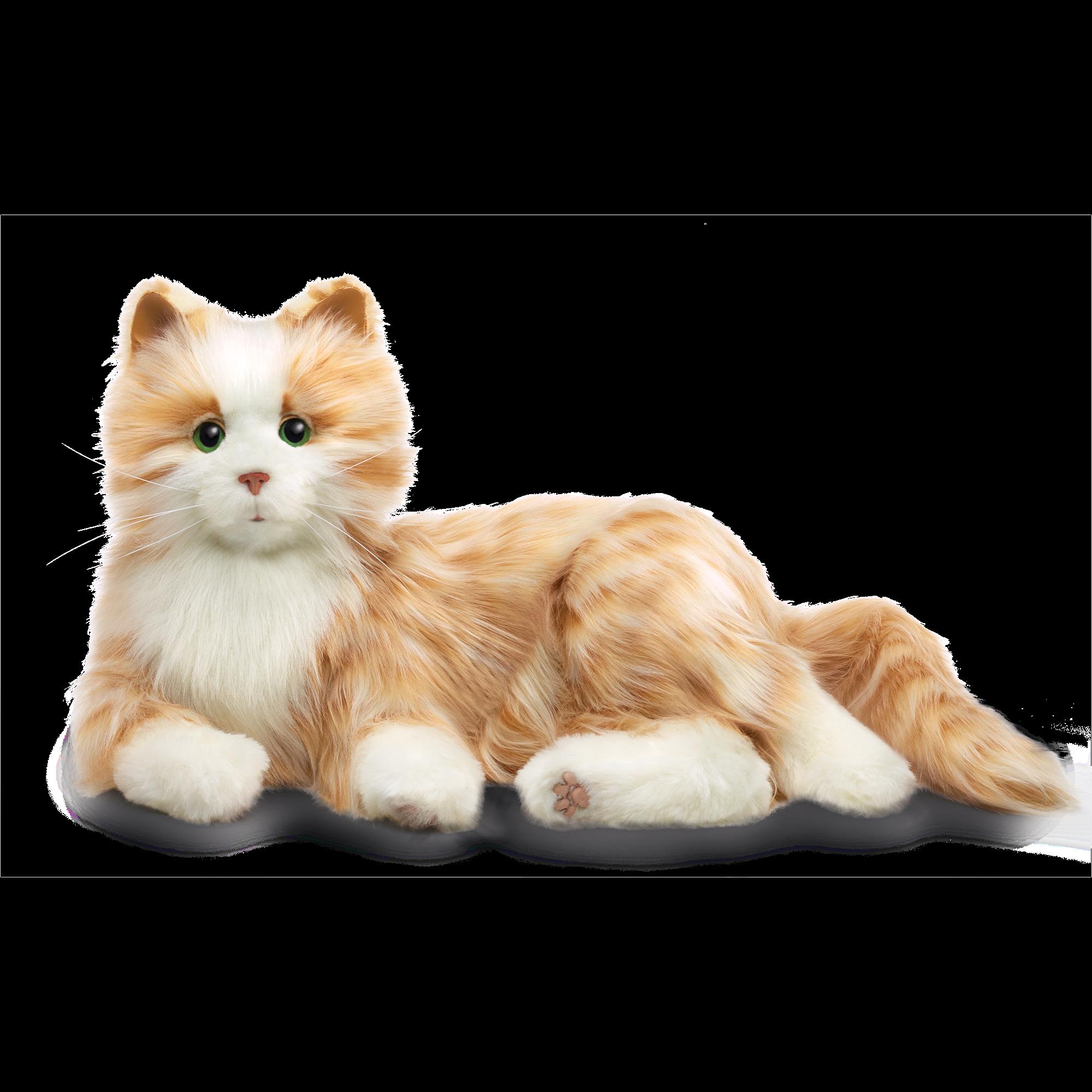 Joy For All Orange Tabby Cat Orange Tabby Cats Tabby Cat Tabby Cat Pictures