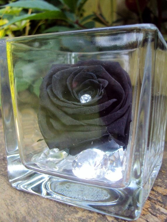 Vase Cube Rose Noir Diamants Fleur Naturelle Eternelle Roses