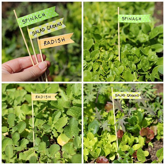 Exceptional Washi Tape Garden Tags Plant Markers