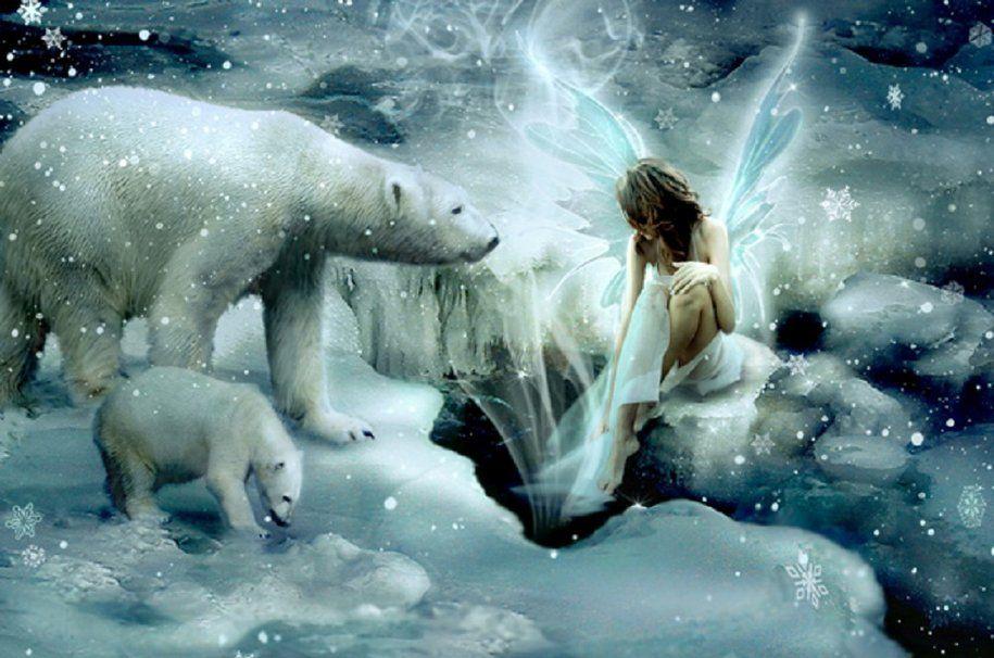 fée d'hiver et ours polaires