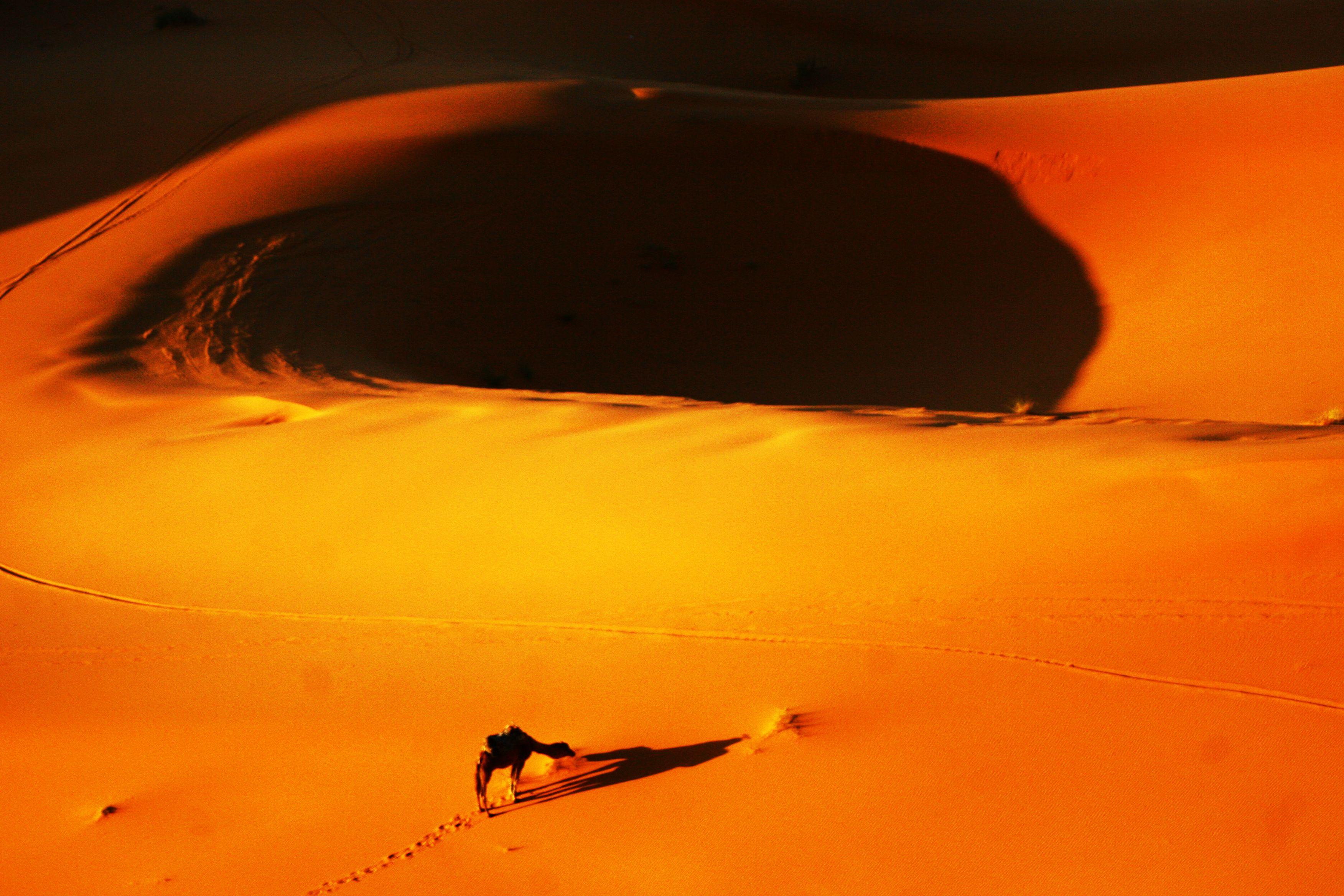 Merzouga desert, Marroc. Desierto de Merzouga, Marruecos.