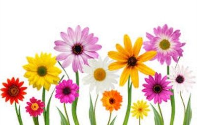 Free May Flowers Clipart Clipart Cover Photos Flowers Facebook