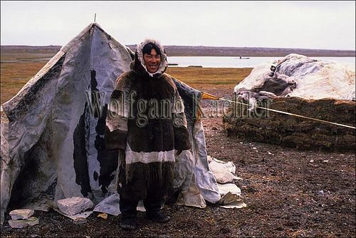 arctic bay nunavut hotels