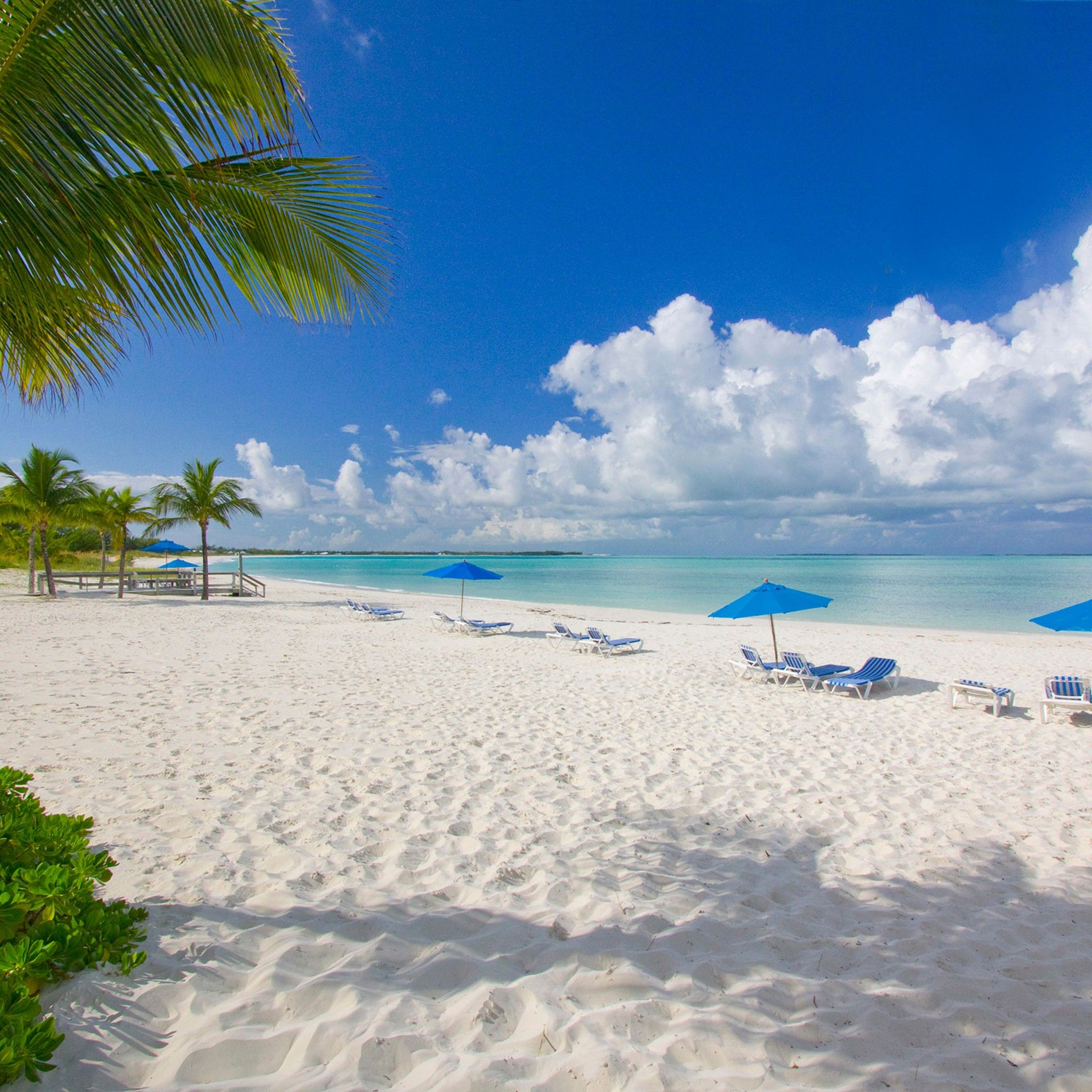 Beach Island: Bahama Beach Club Resort (Treasure Cay, Great Abaco Island