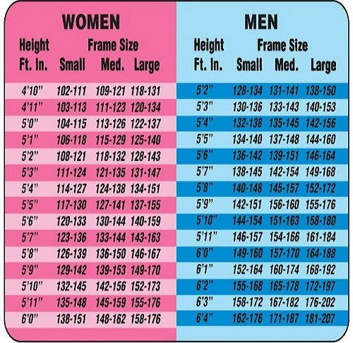 Adult Male and Female Height to Weight Ratio Chart Weight charts - bmi index chart template