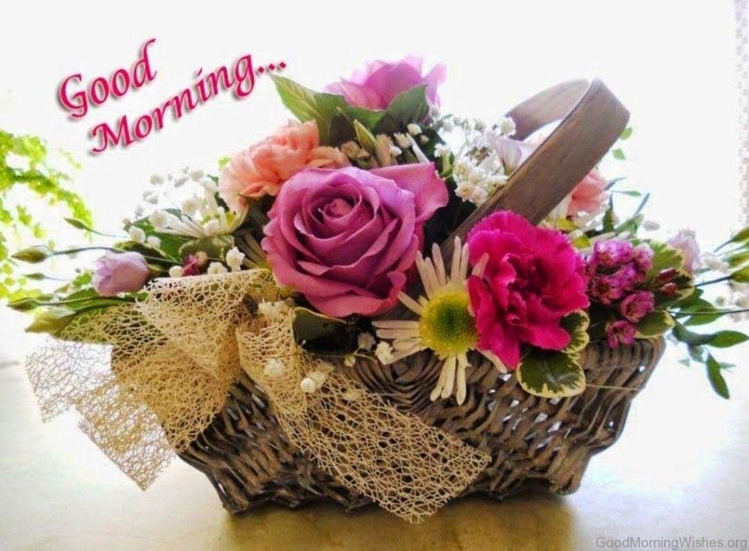 Pin by Dinesh Kumar Pandey on Good Morning Cute good