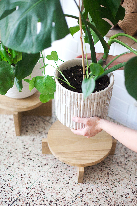 DIY Modern Wood Plant Stand   handmade   Pinterest   Plants, Woods ...