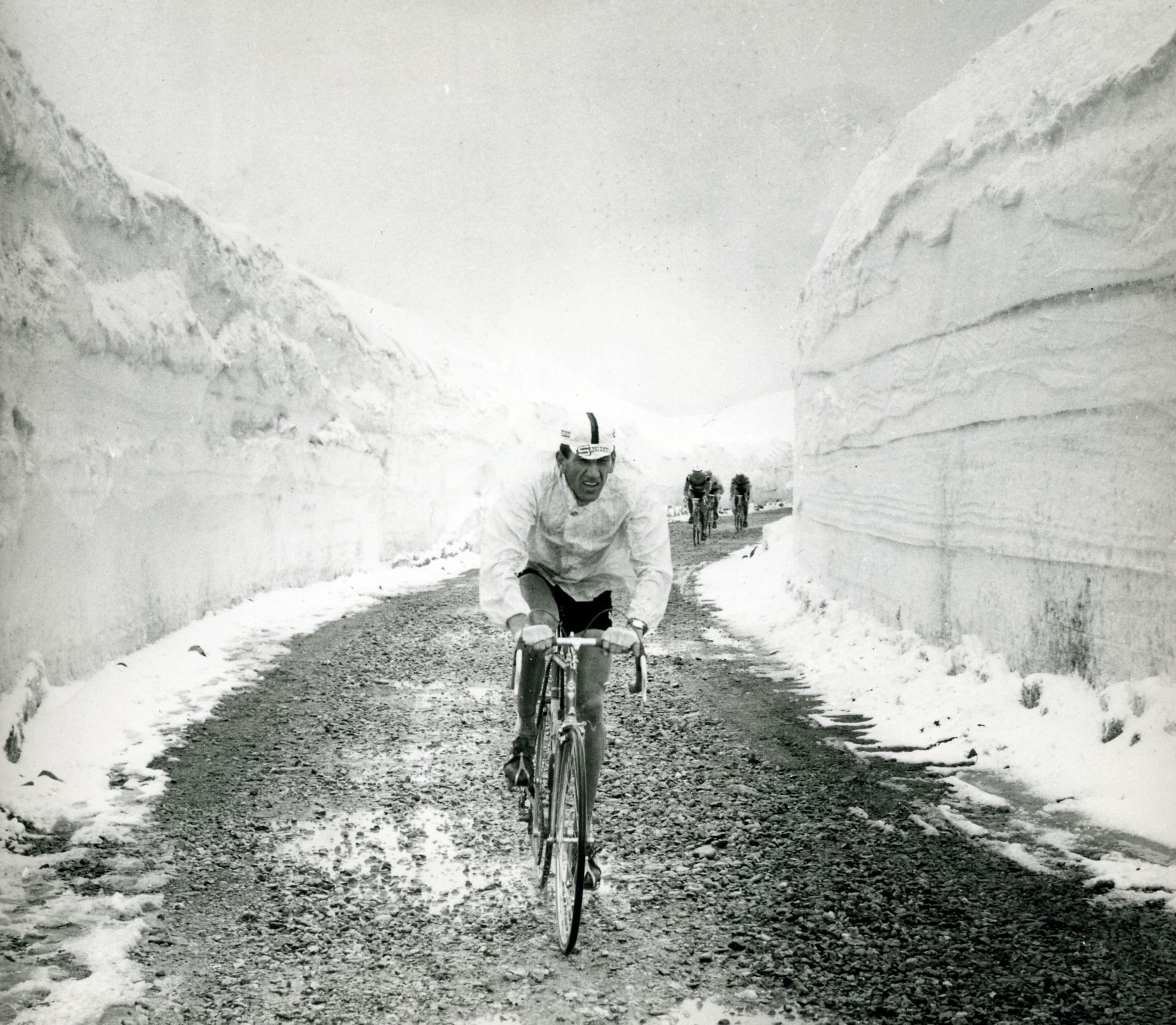 Vittorio Adorni Http En Wikipedia Org Wiki Vittorio Adorni Cycling Pictures Cycling Posters Cycling Photography