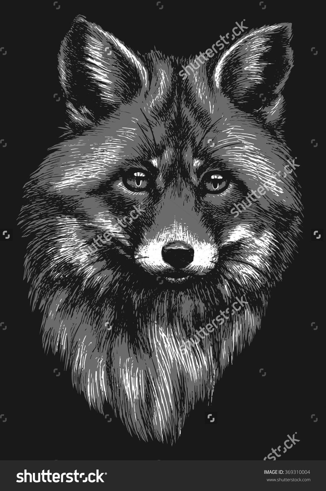 Black and white fox sketch   Fox sketch, White fox, Sketches