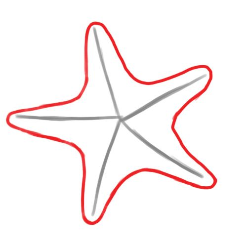 How to draw a starfish now i always use this method