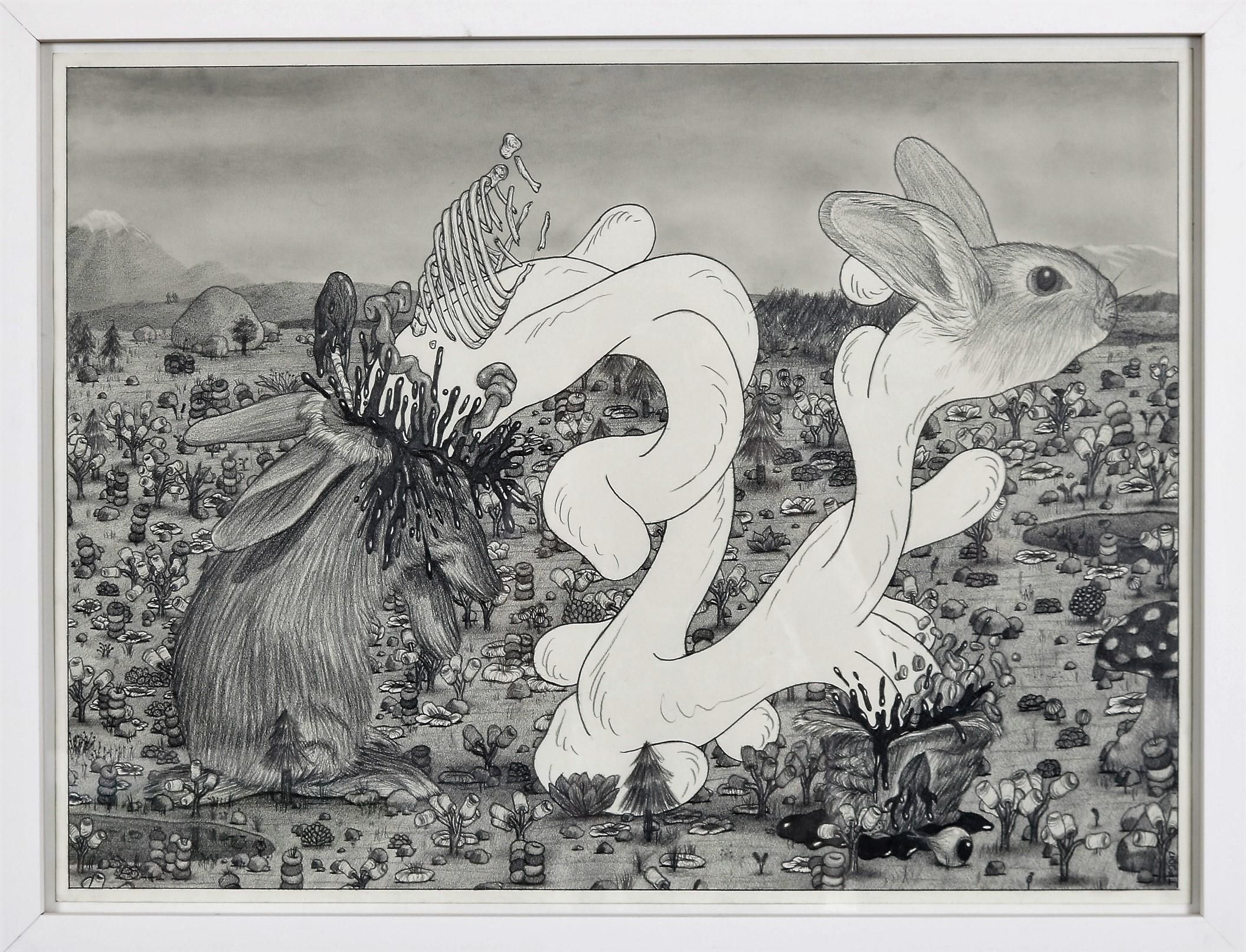 Sperrmüll Teltow bunny parasite 18 x 24 pencil on paper 2017
