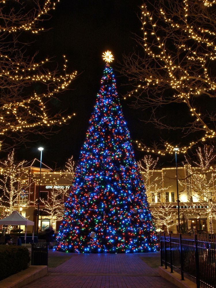 Where To See The Best Christmas Light Displays In Columbus Ohio Best Christmas Lights Best Christmas Light Displays Christmas Light Displays