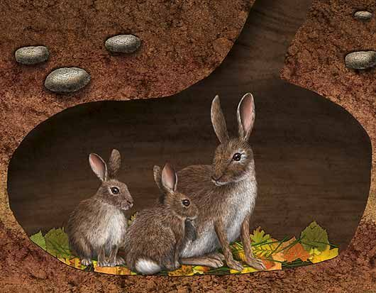 rabbits in an underground burrow with leaves on the floor