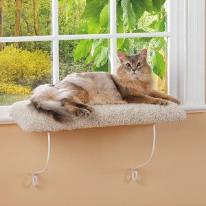 whisker city cozy kitty cushioned window perch window. Black Bedroom Furniture Sets. Home Design Ideas