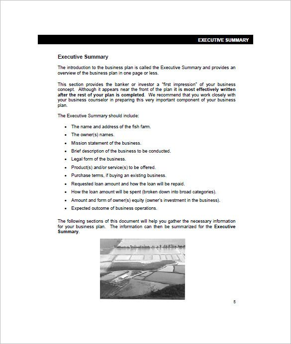 Farm Business Plan Template u2013 13+ Free Word, Excel, PDF Format - one page summary template