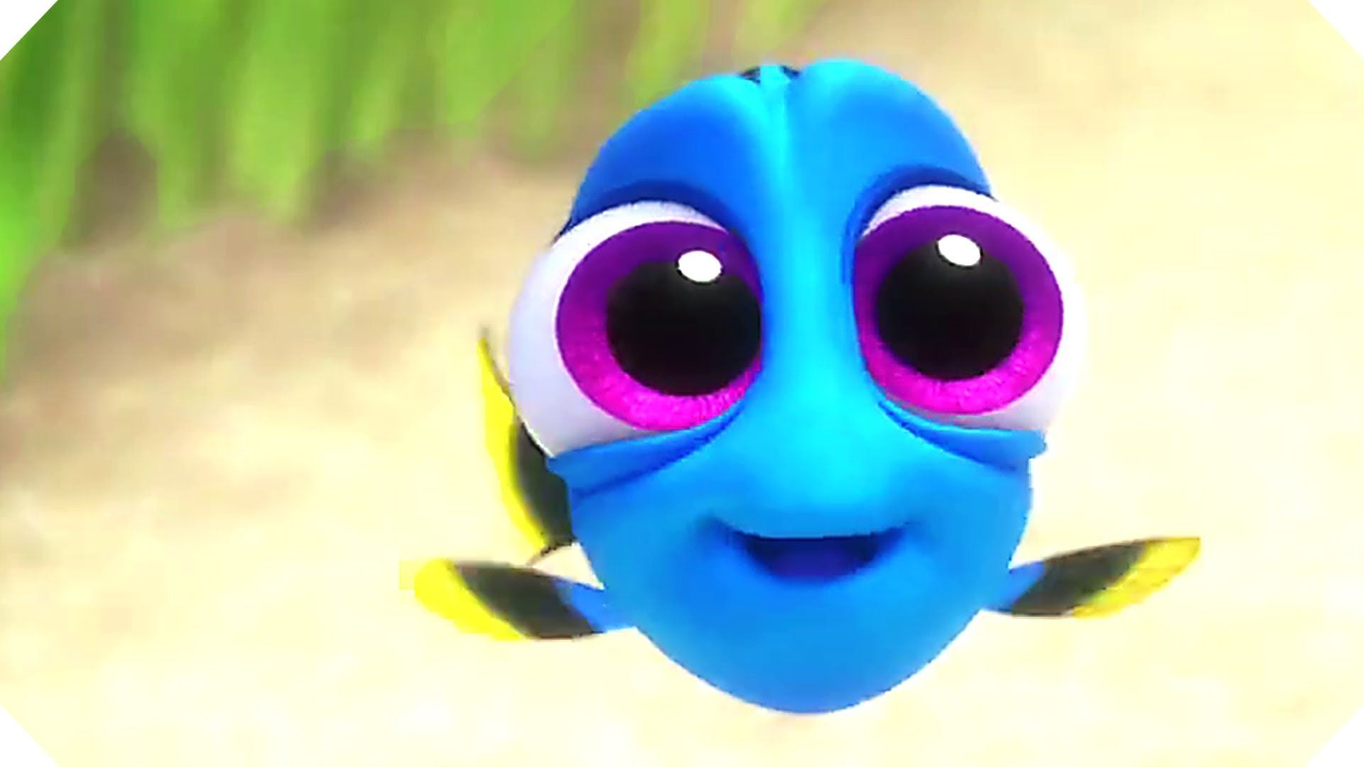 Finding Dory 2016 Characters