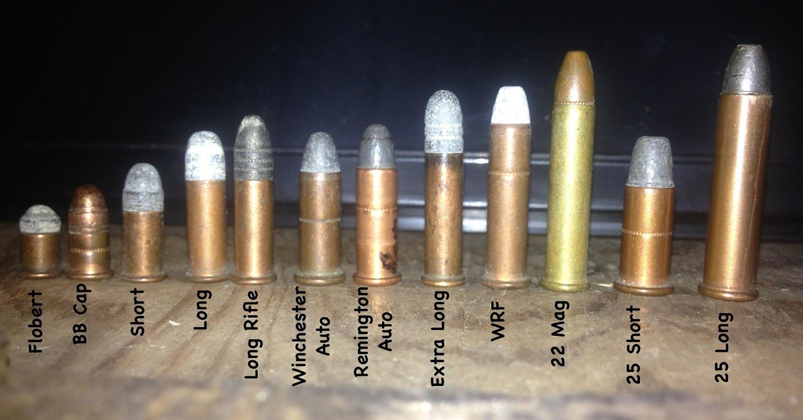 Rimfire Ammo Comparison And Identification Chart