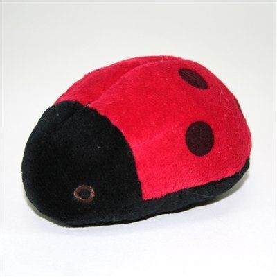 Lady Bug -- Check out the image by visiting the link.