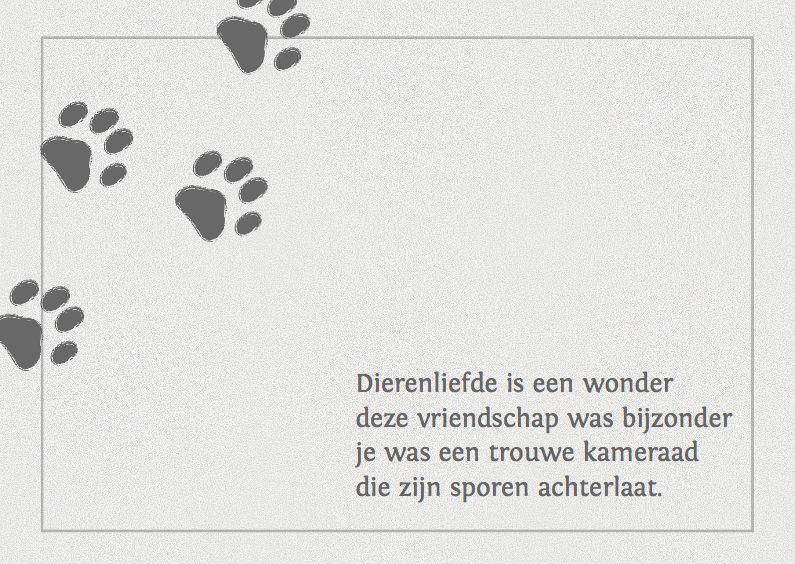 Condoleance Kaart Voor Een Hond Of Poes Honden Gezegden