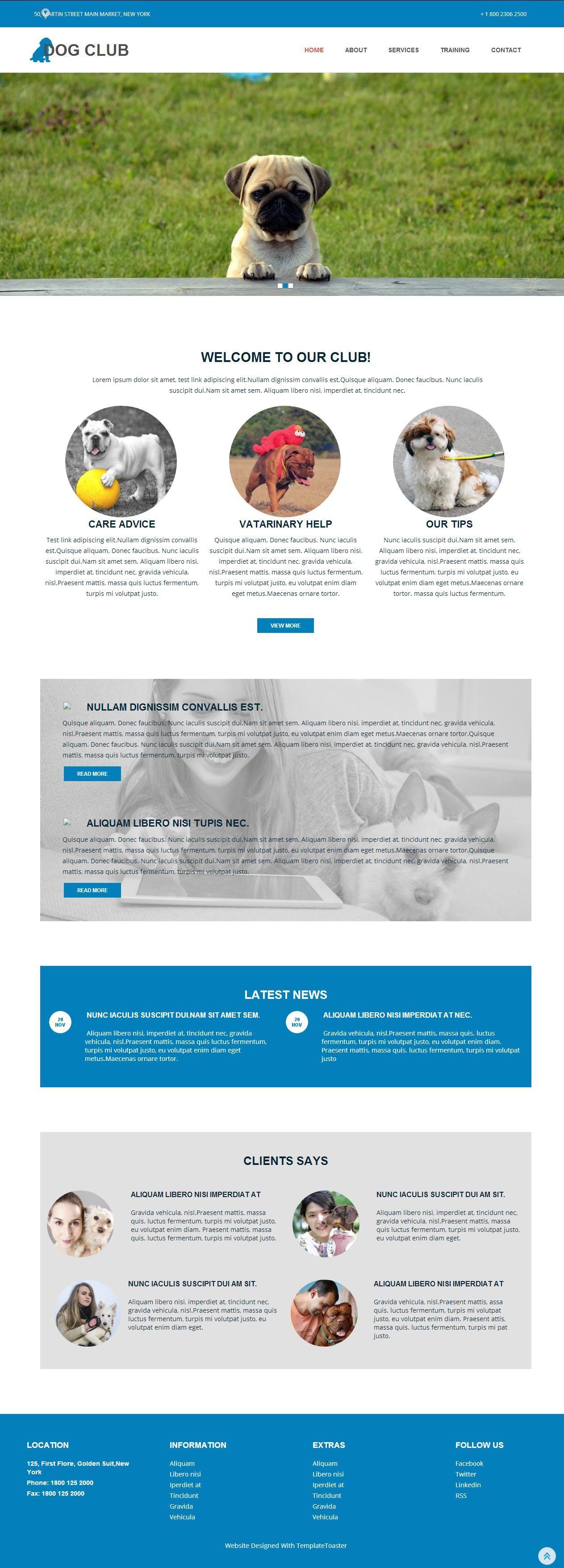 Wunderbar Kostenlose Webvorlagen Galerie - Entry Level Resume ...