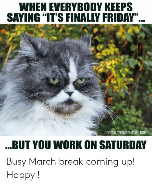 saturday weekdays weekend memes humor quotes crumpy