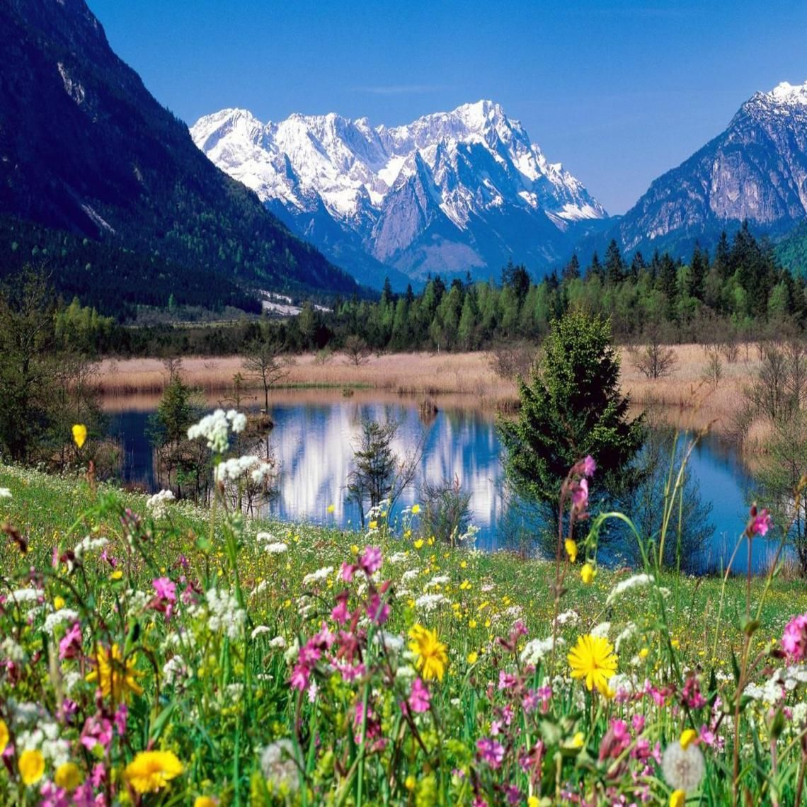Loisach River