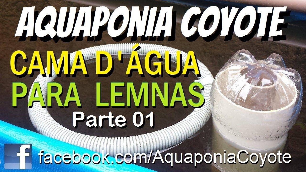 Como foi feita nossa Cama D'água para as Lemnas, Lentilha d'água - Aquap...