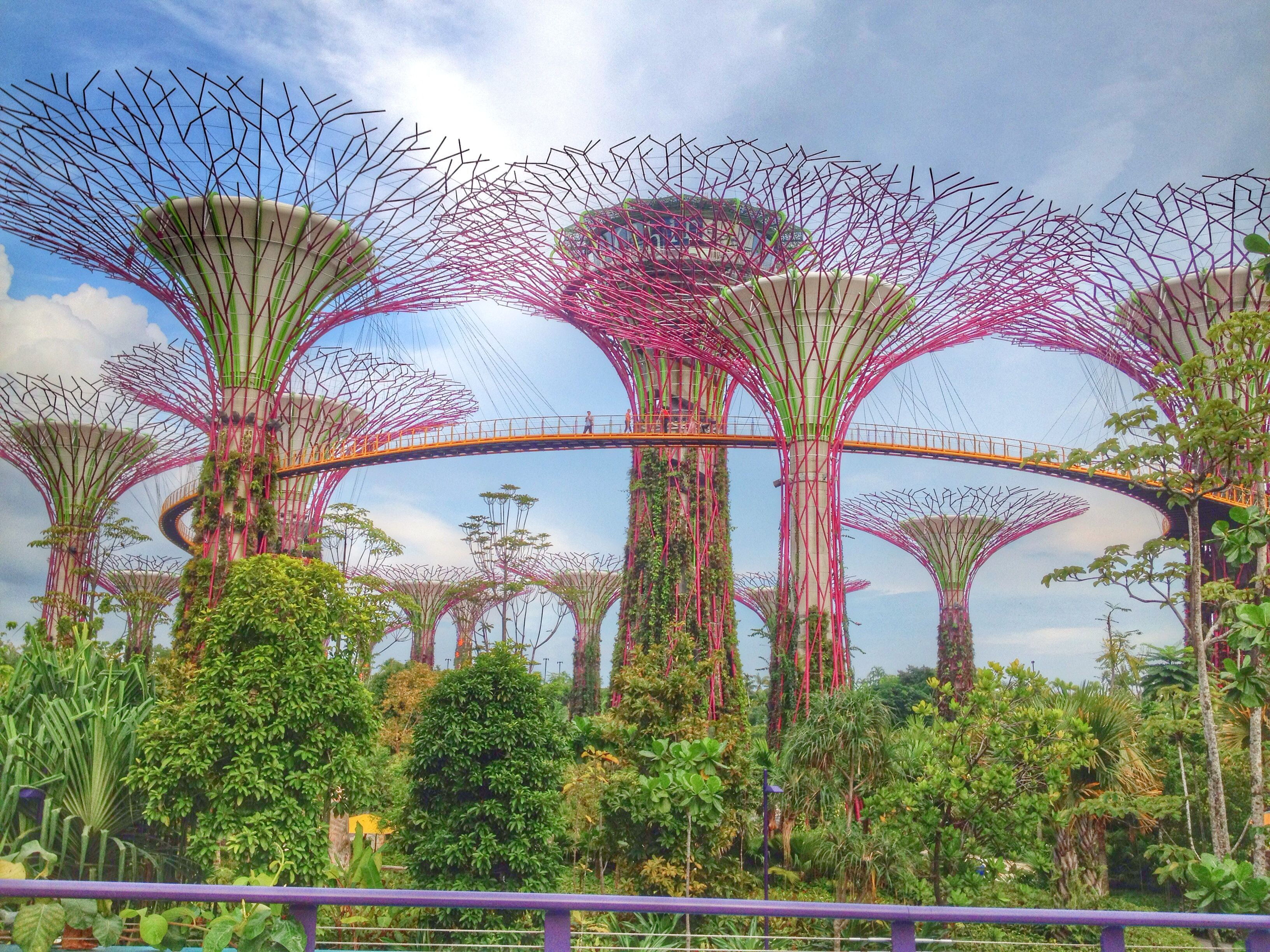 Garden by the Bay Singapore (With images) Gardens by