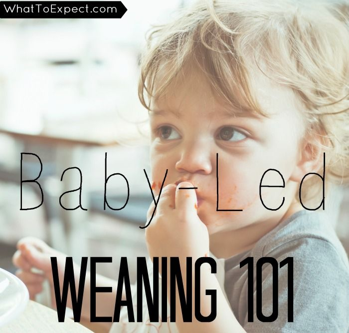 What is baby-led weaning -- and is it right for your family? Get all the answers you need.