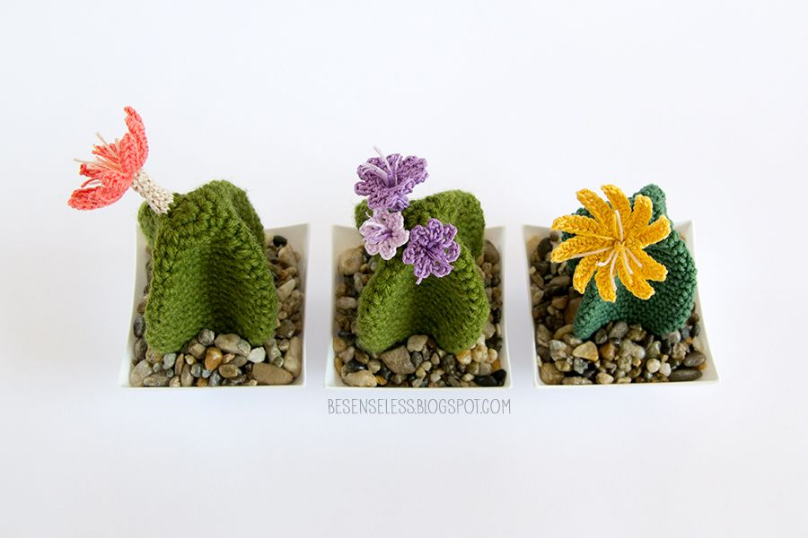 crochet amigurumi cactus - succulente a uncinetto - airali | Pola ...