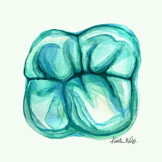 Molar #Art | I LOVE TEETH | Pinterest