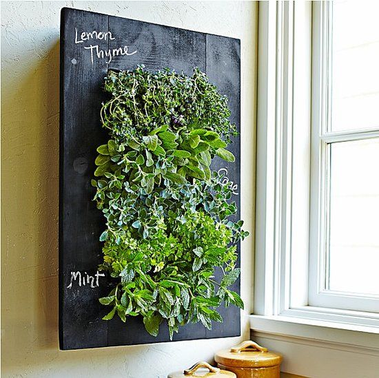 Chalkboard Wall Planter   Grow Your Plants And Herbs On The Rustic Looking  Chalkboard Wall Planter From Williams Sonoma. The Black, Chalkboard Backing  Of ...